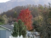 Fall in Big Stone Gap, VA